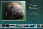 Manatee Mindfulness & Other Wildlife Wisdom Book