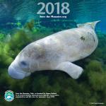 2018 Save The Manatee Club Calendar