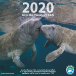 2020 Save the Manatee Club Calendar